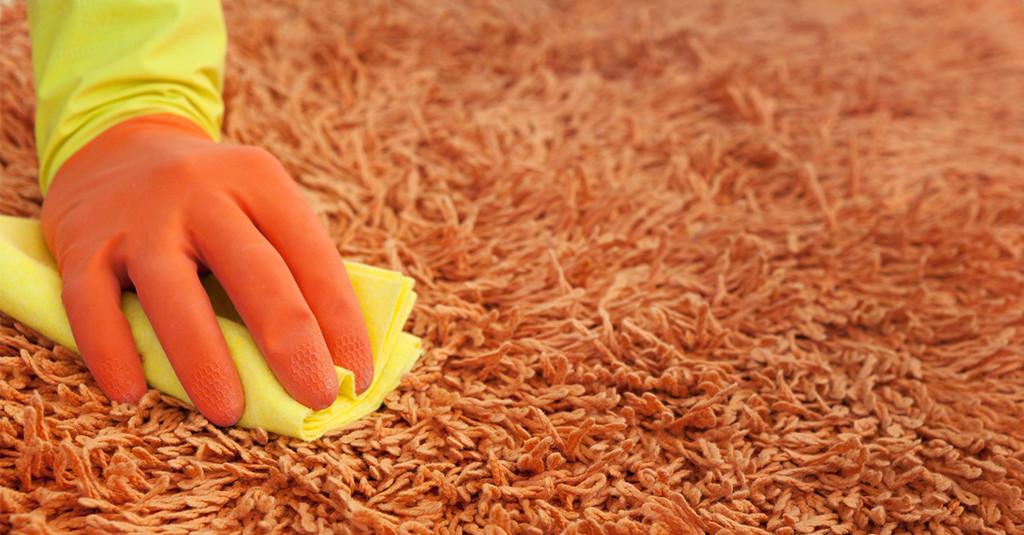 Tepovanie 1. časť: Ako na čistý koberec?